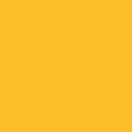 0134 BS Sunshine