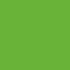 7190 BS Mamba Green