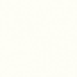 8100 SM Pearl White