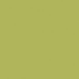 8996 BS Ocean Green